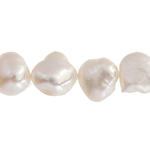 Freshwater Pearl Fancy Shape 9.5mm White 16in (aprx 45g) image