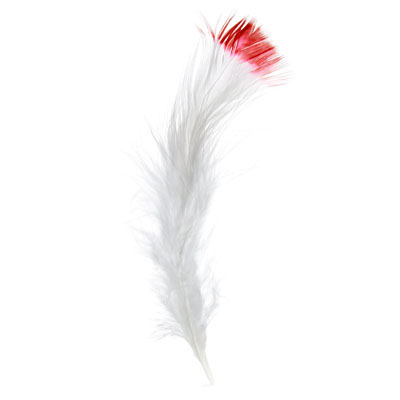 Marabou Feathers 4-6in White/Red (3Headersx6g ea) image